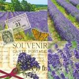 Lavendelfelder auf einer Postkarte - Lavender fields on a postcard - Champs de lavande sur une carte postale