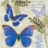 Schmetterlinge, Blauregen, Farn & Stempel - Butterflies, wisteria, fern & stamp - Papillons, glycines, fougères et timbres