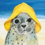 junge Robbe mit einem Sonnenhut - young seal with a sun hat - jeune phoque avec un chapeau de soleil