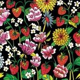 Erdbeeren, Dahlien & andere Blüher - Strawberries, dahlias & other bloomers - Fraises, dahlias et autres bloomers