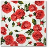 rote Rosen - Red roses - roses rouges