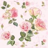schöne Rosen auf rosee - beautiful roses on rosee - belles roses sur rose