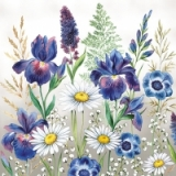 Margeriten, Gräser & Farne - Daisies, grasses & ferns - Marguerites, herbes et fougères
