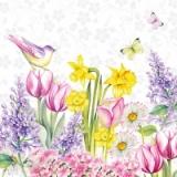 Schmetterling und Vogel besuchen Tulpen, Narzissen & andere Blumen - Butterfly and bird visit tulips, daffodils & other flowers - Papillons et oiseaux visitent tulipes, jonquilles et autres fleurs