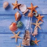 Flaschenpost mit Seesterne & Muscheln vor einer blauen Holzwand - Message in a bottle with starfish and shells in front of a blue wooden wall - Message dans une bouteille avec étoile de mer et coquill