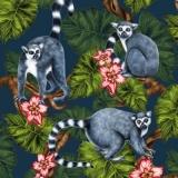 Lemuren, Hibiskus & Palmen - Lemurs, hibiscus & palm trees - Lémuriens, hibiscus et palmiers
