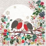 2 Rotkehlchen auf einem Ast - 2 robins on a branch - 2 robins sur une branche