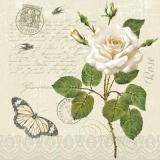 Schmetterling, Poststempel, Briefmarke, Geschriebenes & eine weisse Rose - Butterfly, postmark, stamp, written & a white rose - Papillon, cachet de la poste, timbre, écrit & une rose blanche