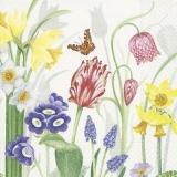 gemalte Frühlingsblumen & Schmetterling - painted spring flowers & butterfly - papillon et fleurs printanières peintes
