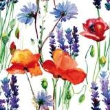 Kornblumen, Mohn & Lavendel - Cornflowers, poppies & lavender - Bleuets, Coquelicots & Lavande