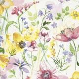 Wiesenblumen - Wildflowers - Fleurs sauvages