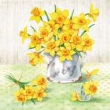 Narzissen in alter Kanne - Daffodils in old jug - Jonquilles dans la vieille cruche