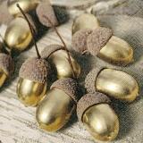 goldene Eicheln - golden acorns - glands d or