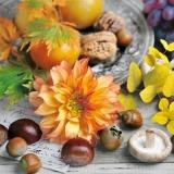 herbstliches Stilleben - autumnal still life - nature morte automnale