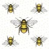 5 Bienen - 5 bees - 5 abeilles