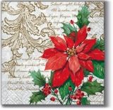stilvoller Weihnachsstern - stylish christmas star - étoile de noël élégant