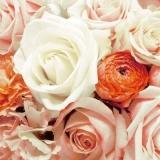 Rosen - Roses