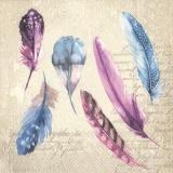 bunte Federn & Geschriebenes - colorful feathers & written - plumes colorées et écrites