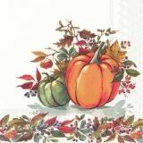 2 Kürbisse - 2 pumpkins - 2 citrouilles