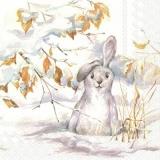 niedliches Kaninchen im Schnee - cute rabbit in the snow - mignon lapin dans la neige