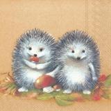 2 kleine Igel - 2 little hedgehogs - 2 petits hérissons