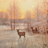 Rehe im Winterwald - Deer in the winter forest - Cerf dans la forêt d hiver