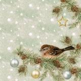 Spatz sitzt im Zweig & Baumkugeln - Sparrow sits in branch & tree balls - Sparrow est assis dans les branches et les boules d arbres