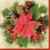 Zweige, Zapfen, Sterne & Weihnachtstern - Branches, cones, stars & christmas stars - Branches, cônes, étoiles et étoiles de Noël