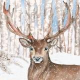 Hirsch im verschneiten Birkenwald -Deer in snowy birch forest - Cerf dans la forêt de bouleaux enneigés
