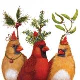 3 Vögel mit Haubenschmuck - 3 birds with hood jewelry - Bijoux 3 oiseaux avec capuche