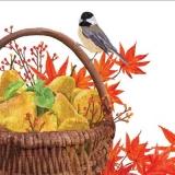 Vogel, Laub & Korb mit Birnen - Bird, foliage & basket with pears - Oiseau, feuillage & corbeille aux poires