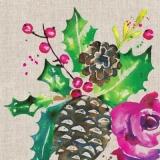 Ilex, Zapfen, Blüte & Blätter - Ilex, cones, blossom & leaves - Ilex, cônes, fleurs et feuilles