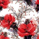 rote Amaryllis - red amaryllis - amaryllis rouge