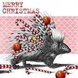 Stachelschwein, Äpfel, Zuckerstangen & Weihnachtsgrüsse - Porcupine, Apples, Candy Canes & Christmas Greetings - Porc-épic, pommes, cannes de bonbon et voeux de Noël