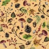 Pilze, Eicheln, Laub, Zweige - Mushrooms, acorns, leaves, branches - Champignons, glands, feuilles, branches