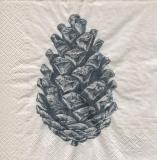 grosser Zapfen - big cone - gros cône