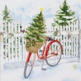 kleiner Weihnachtsbaum auf einem Fahrrad - small christmas tree on a bicycle - petit arbre de Noël sur un vélo