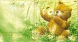 Teddy im Gras