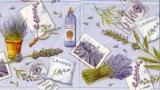 Lavende de Provence II
