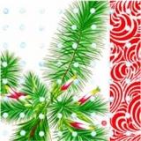 Blühender Nadelbaum - Flowering conifer - Floraison conifères