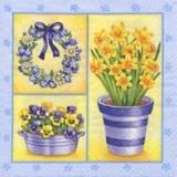 Hübsche Narzissen & Stiefmütterchen - Pretty Daffodils & Pansies - Joli Jonquilles et pensées