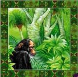 Affe im Urwald