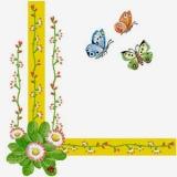 Schmetterlinge auf Blütensuche