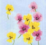 Pink & Yellow Pansies
